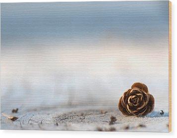 Squirrel Leftovers Wood Print by Lisa Knechtel
