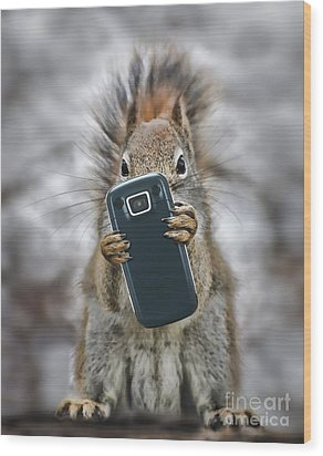 Squirrel With Cellphone Wood Print by Mike Agliolo
