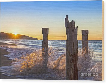 St Clair Beach Dunedin At Sunrise Wood Print by Colin and Linda McKie