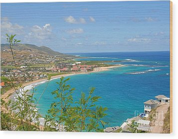 St. Kitts Wood Print by Cindy Manero