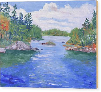St Lawrence River-view From Waterson State Park Wood Print by Robert P Hedden