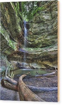 St Louis Canyon Wood Print