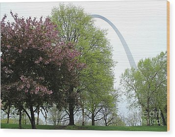 St. Louis Spring Wood Print by Theresa Willingham