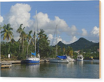 St. Lucia - Cruise - Boats At Dock Wood Print