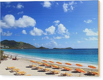 St. Maarten Calm Sea Wood Print by Catie Canetti