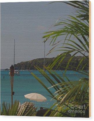 St Maarten II Wood Print