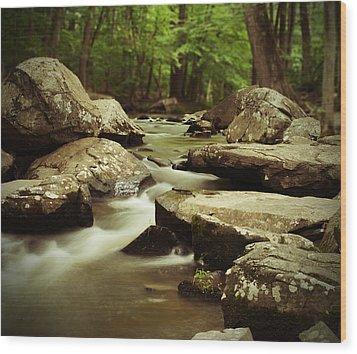 St. Peters Stream Wood Print by Michael Porchik