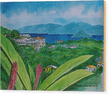 St. Thomas Virgin Islands Wood Print