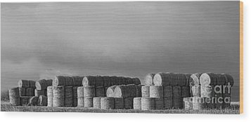 Stacked Round Hay Bales Bw Panorama Wood Print by James BO  Insogna