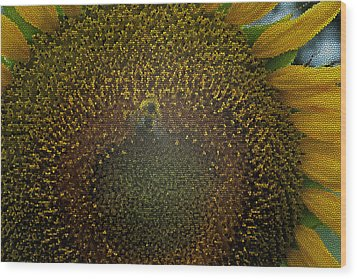 Stained Glass Sunflower Wood Print