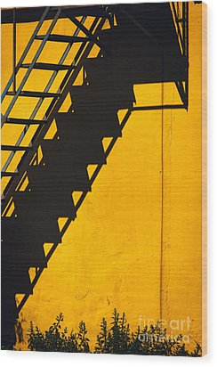 Wood Print featuring the photograph Staircase Shadow by Silvia Ganora