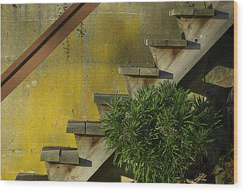 Stairs Wood Print by Michele Wright