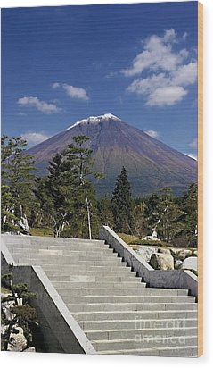Wood Print featuring the photograph Stairway To Mt Fuji by Ellen Cotton