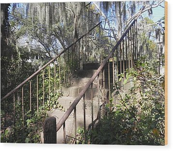 Stairway To Nowhere Wood Print by Patricia Greer