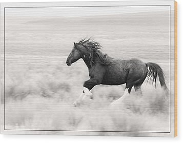 Stallion Blur D8785 Wood Print by Wes and Dotty Weber