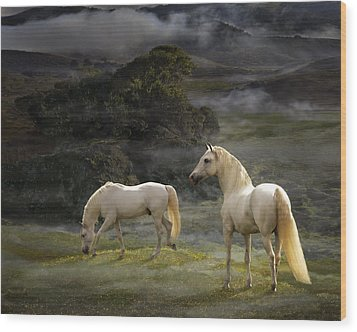 Stallions Of The Gods Wood Print by Melinda Hughes-Berland