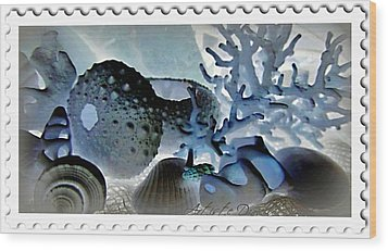 Stamp Seashells In Blue  Wood Print by Danielle  Parent