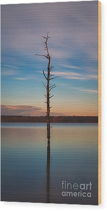 Stand Alone 16x9 Crop Wood Print by Michael Ver Sprill