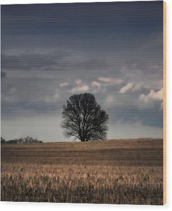 Stand Alone Wood Print