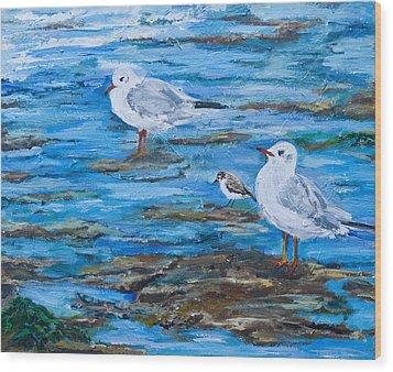 Sea Birds Wait Wood Print
