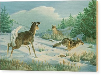 Stand-off  -whitetail Doe And Coyotes Wood Print by Paul Krapf