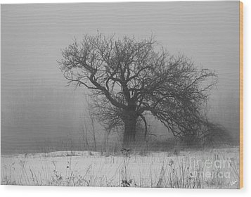 Standing Alone Wood Print by Alana Ranney