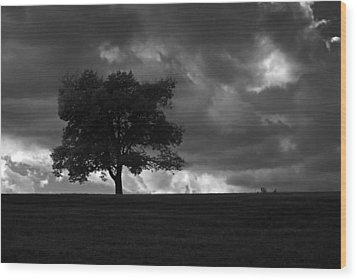 Standing Alone Wood Print by Lena Wilhite
