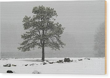 Standing In A Snow Storm Wood Print by Brenda Bostic