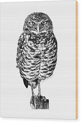 Wood Print featuring the drawing 041 - Owl With Attitude by Abbey Noelle