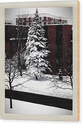 Wood Print featuring the photograph Standing Tall by Zinvolle Art