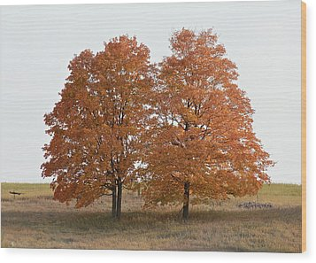 Standing Together Wood Print by Penny Meyers