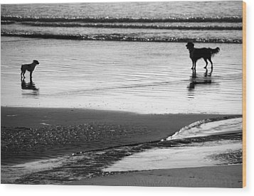 Standoff At The Beach Wood Print