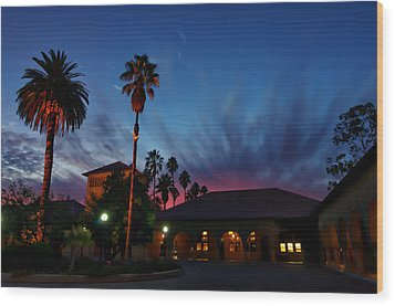 Stanford University Quad Sunset Wood Print by Scott McGuire