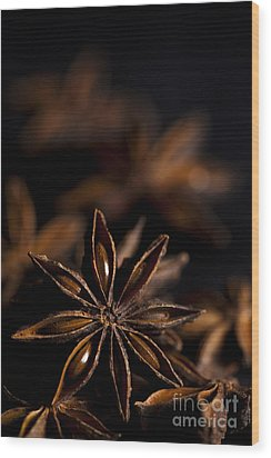 Star Anise Study Wood Print by Anne Gilbert