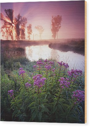 Star In The Fog Wood Print by Ray Mathis