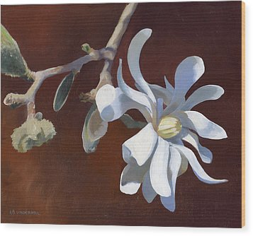 Wood Print featuring the painting Star Magnolia by Alecia Underhill