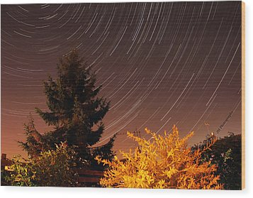 Star Trails Wood Print by Jay Harrison