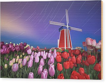 Wood Print featuring the photograph Star Trails Windmill And Tulips by William Lee