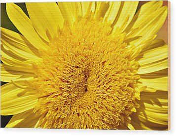 Starburst Lemon Aura Wood Print by Julie Palencia