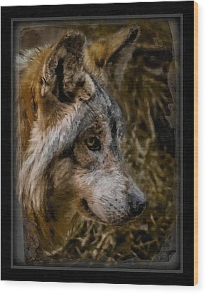 Stare Of The Wolf Wood Print by Ernie Echols