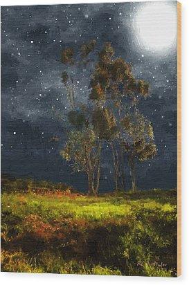 Starfield Wood Print by RC deWinter