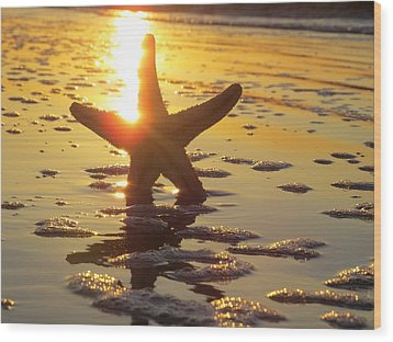 Starfish And Bubbles Wood Print