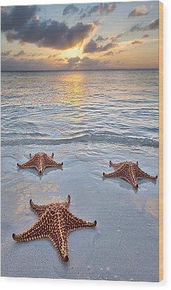 Wood Print featuring the photograph Starfish Beach Sunset by Adam Romanowicz