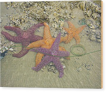 Starfish Love-oregon Coast Wood Print