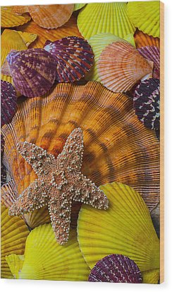 Starfish With Seashells Wood Print by Garry Gay