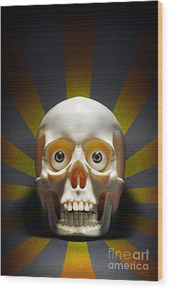Staring Skull Wood Print by Carlos Caetano
