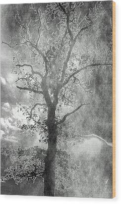 The Dark Side Wood Print by Annette Hugen
