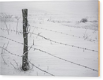 Stark Realities Of Winter Wood Print by John Haldane