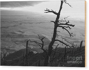 Stark Tree Wood Print by Mary Carol Story