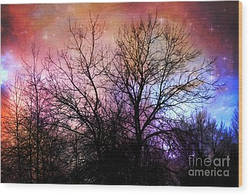 Wood Print featuring the photograph Starry Night by Sylvia Cook